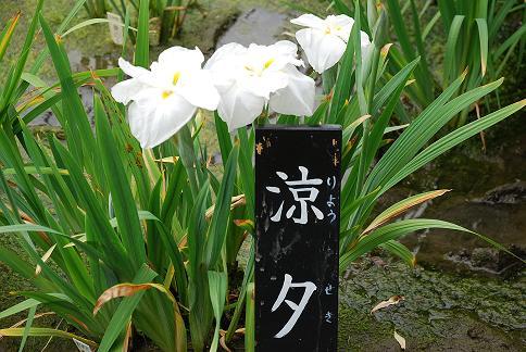 blog419-13.JPG