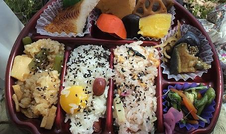 blogsakura23.jpg
