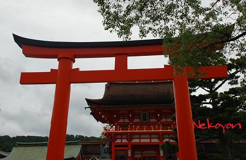 kyoto-1.png