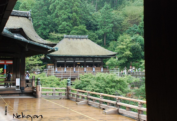 kyoto-32.jpg