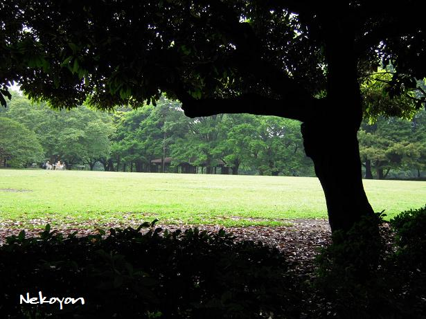 blog418-6.JPG