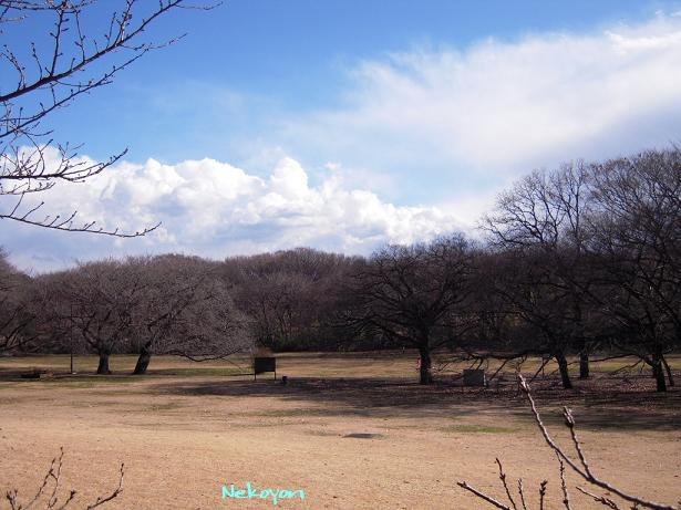 blog448-8.JPG