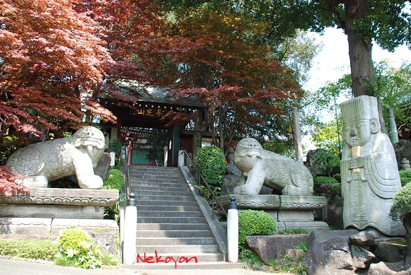 blogmaruko23.jpg