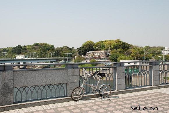 blogmaruko46.jpg
